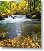 Waterfall On Whatcom Creek Metal Print