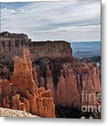 Weathered By Time Metal Print