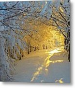When Snow Falls Nature Listens Metal Print