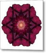 Beach Rose I Flower Mandala White Metal Print