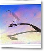 White Bird Metal Print