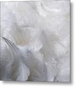 White Feathers Metal Print