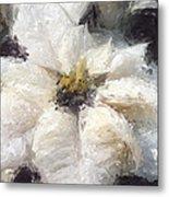 White Poinsettias Christmas Card Metal Print