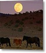 Wild Horse Moon  Metal Print by Jeanne  Bencich-Nations