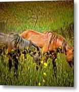 Wild Horses In California Series 2 Metal Print