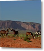 Wild Horses In Monument Valley Metal Print