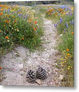 Wildflower Wonderland 11 Metal Print