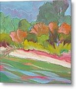 Willamette River 31 Metal Print