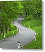 Winding Road In The Woods Metal Print