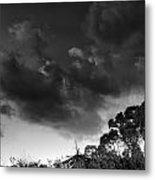 Windy Trees Metal Print
