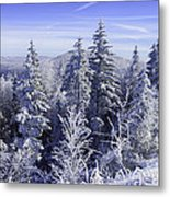 Winter Along The Highland Scenic Highway Metal Print