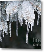 Winter Branches In Ice Metal Print