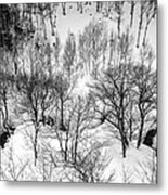 Winter Scene Shiga Japan Metal Print