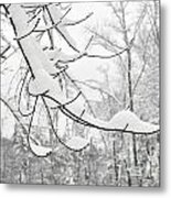 Winter Snow Scene In New England Metal Print