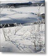 Winter Stream, Jasper National Park Metal Print