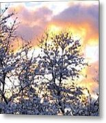 Wintry Sunset Metal Print
