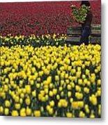 Worker Carrying Tulips Metal Print