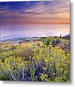 Yellow Flowers At The Sea Metal Print
