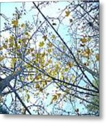 Yellow Leaves Vintage Metal Print