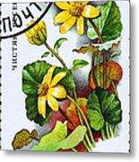 Yellow Lesser Celandine Ranunculus Ficaria Metal Print