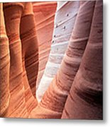 Zebra Canyon  Metal Print