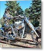 Freedom Biker. Metal Print