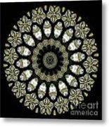 Kaleidoscope Ernst Haeckl Sea Life Series Metal Print