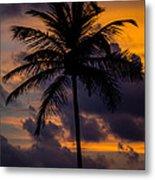 Sunset And Palm Tree Metal Print
