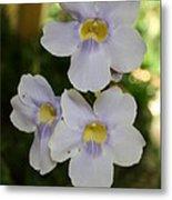 Purple Yellow Tropical Flower Metal Print