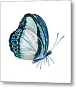 101 Perched Danis Danis Butterfly Metal Print