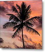 Sunset And Palm Tree Metal Print