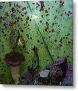 Tropical Fish And Coral Metal Print