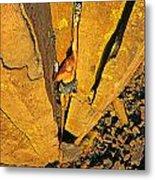 Climber Metal Print