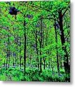 Forest Art Metal Print
