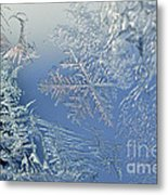 Frost On A Windowpane Metal Print