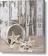 13 Starfish Lane Metal Print