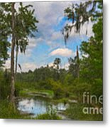 Lowcountry Marsh Metal Print