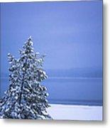140303a-12 Winter Blues Metal Print