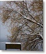 140303a-13 Winter Color Metal Print
