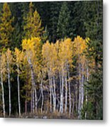 Guardians Of Trestle Creek  -  141102a-138 Metal Print