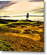 #15 At Chambers Bay Golf Course  Metal Print by David Patterson