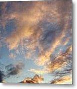 Bright Sky  Metal Print