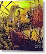 Film Creations-native Metal Print