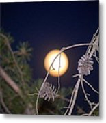 The Moon Metal Print