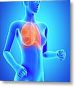 Female Lungs Metal Print