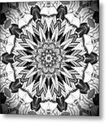 1800 10 Metal Print by Brian Johnson