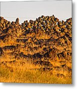 1800s Chinese Rock Fence Metal Print