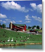 1990s Amish Family Farm Bunker Hill Metal Print
