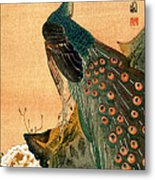 19th C. Japanese Peacock Metal Print