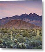 A Desert Sunset  Metal Print